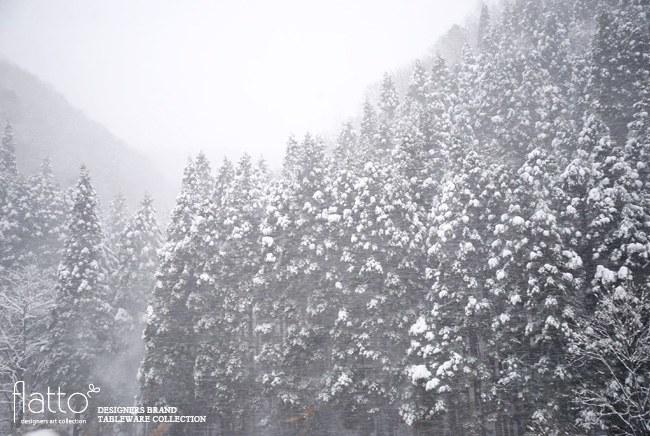 北陸自動車道からの雪景色